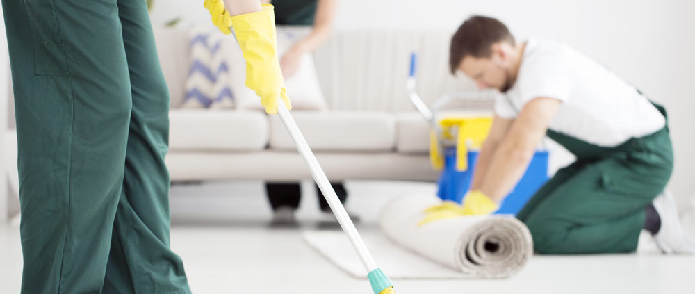 Professional Cleaning Services in Plain City, Utah